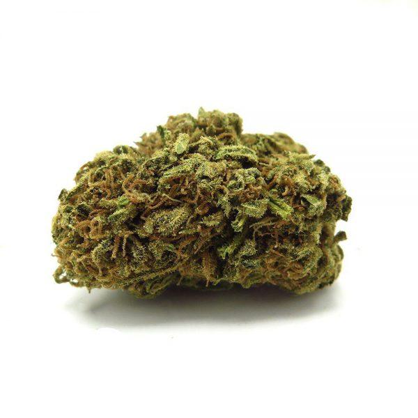 Tangie cannabis strain